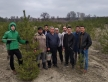 Cut in Fine Before Quarantine: Severodonetsk Muslims Planted 1200 trees