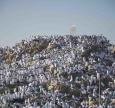 Піст у День Арафат — шанс спокутувати гріхи минулого й наступного року